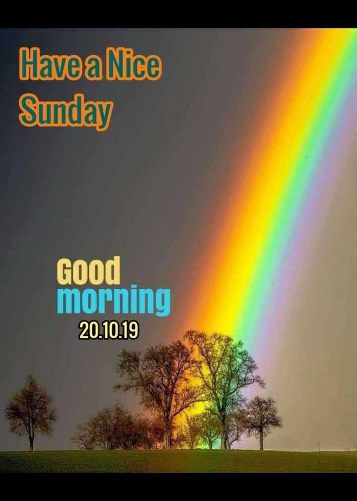💖good morning💖 - Have a Nice Sunday Good morning 20 . 10 . 19 - ShareChat
