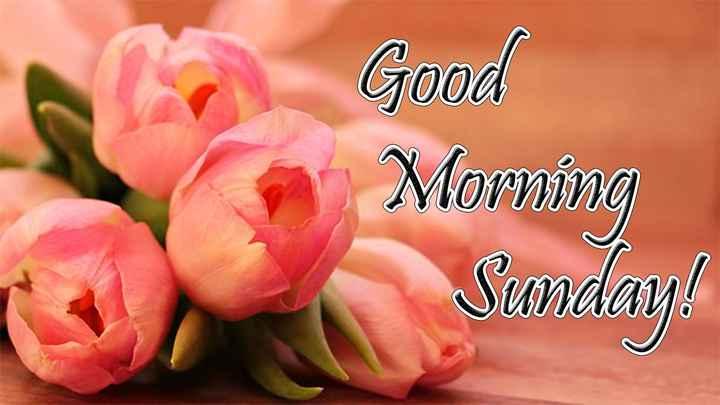 good morning☀ - Good Morning Sunday ! - ShareChat
