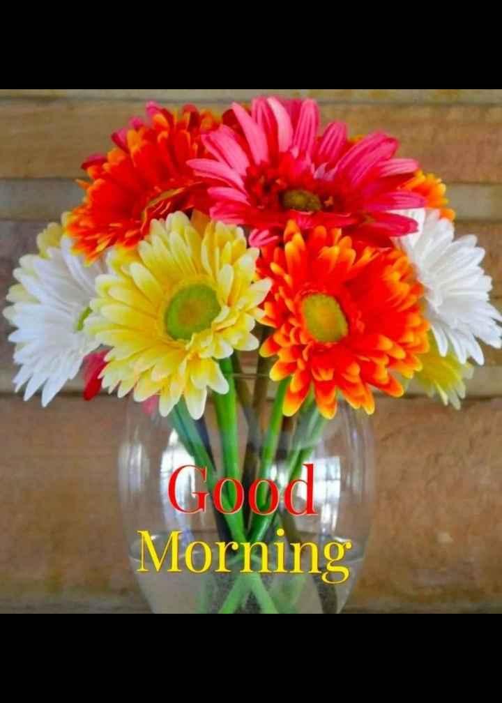 🌹☕good morning☕🌹 - Morning - ShareChat