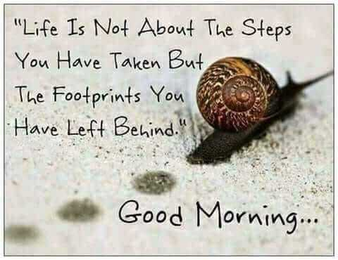 🌸💐🌸 good morning🌸💐🌸 - Life Is Not About The Steps You Have Taken But , The Footprints You Have Left Behind . Good Morning . . . - ShareChat