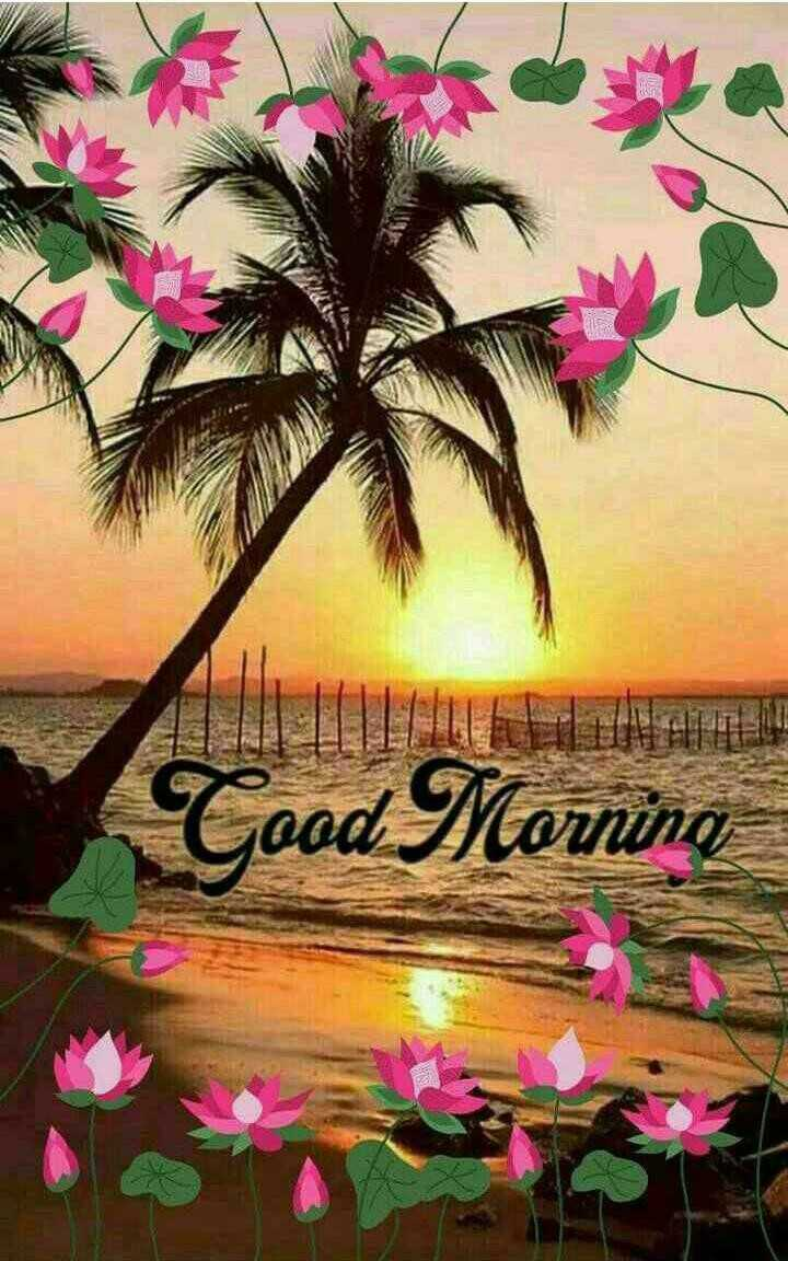 🌄🌞good morning 🌞🌄 - Cood Morning - ShareChat