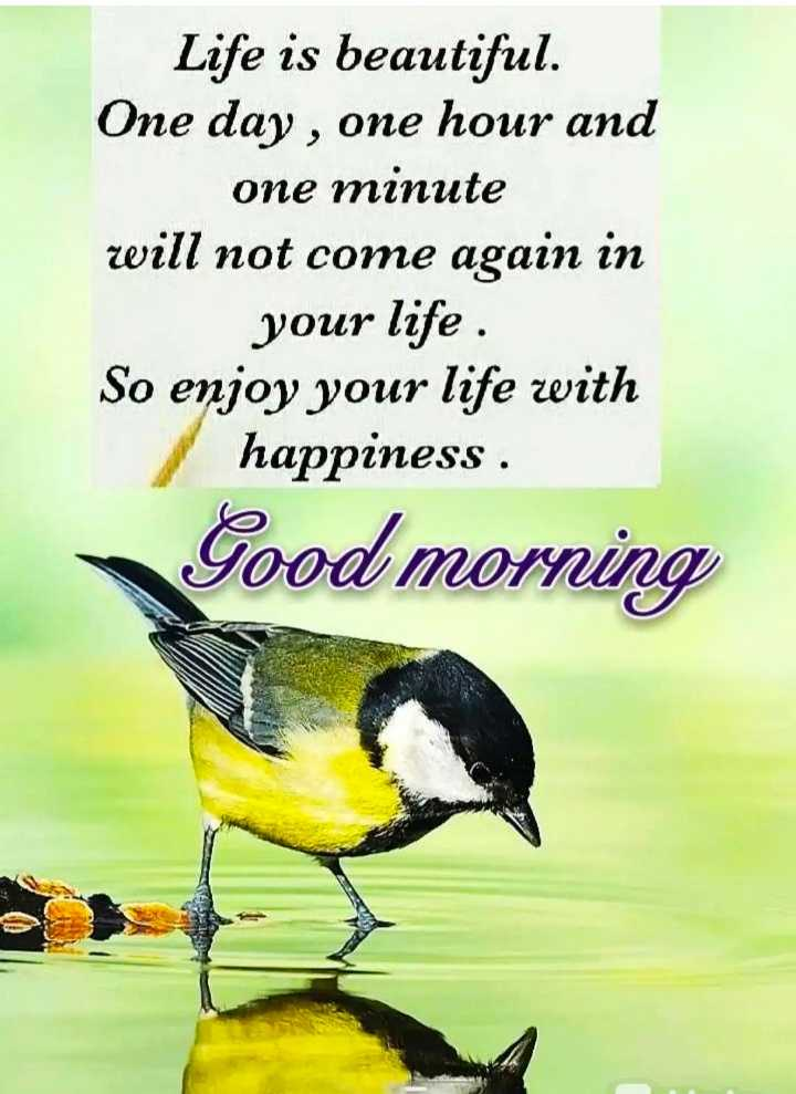 good morning💐 - Life is beautiful . One day , one hour and one minute will not come again in your life . So enjoy your life with happiness . Good morning - ShareChat