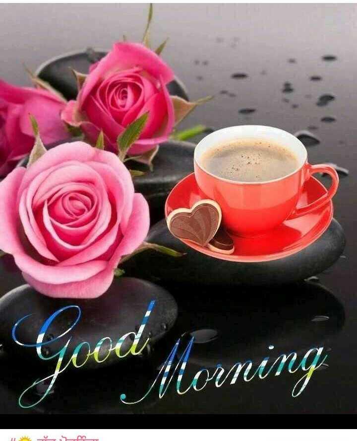 🌷🌻🌷🌻good morning - Morning - ShareChat
