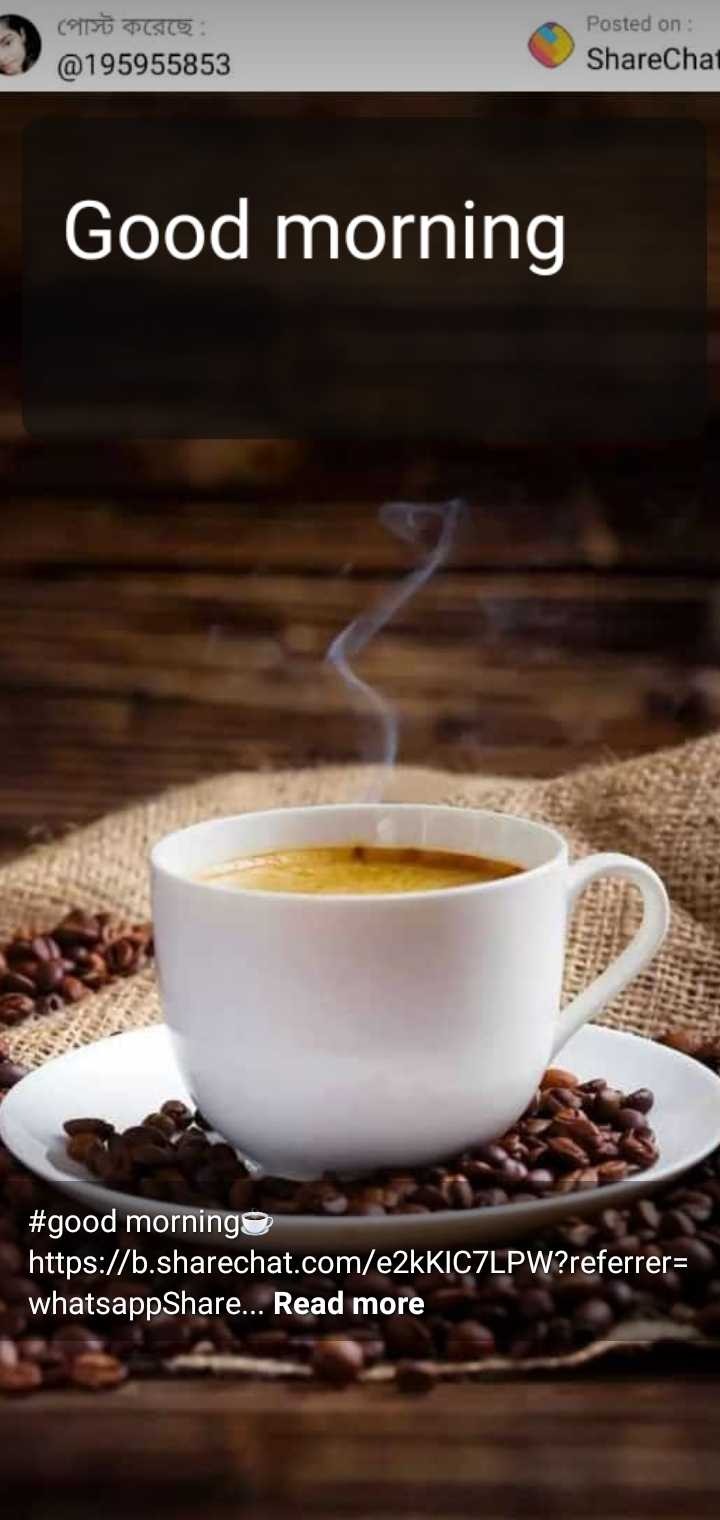 good morning - পােস্ট করেছে : @ 195955853 Posted on : ShareChat Good morning # good morning https : / / b . sharechat . com / e2kKIC7LPW ? referrer = whatsappShare . . . Read more - ShareChat