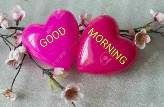 good morning 💖💞 - CC MORNING GOOD 123RF 123RF - ShareChat