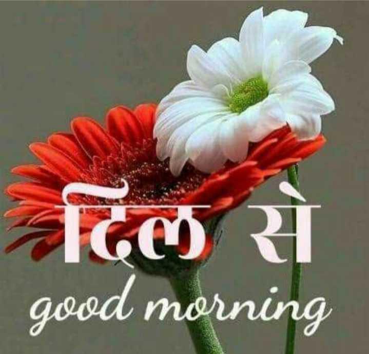 good morning  frends😊 - दिल से good morning - ShareChat