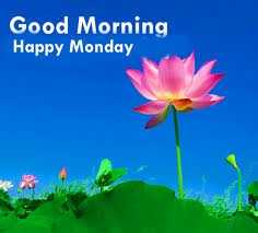 good morning friends.. - Good Morning Happy Monday - ShareChat