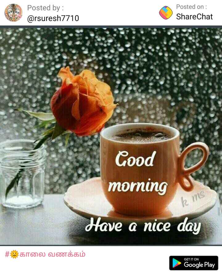 good morning gif - Posted by : @ rsuresh7710 Posted on : ShareChat Good morning k ms Have a nice day # : காலை வணக்கம் GET IT ON Google Play - ShareChat