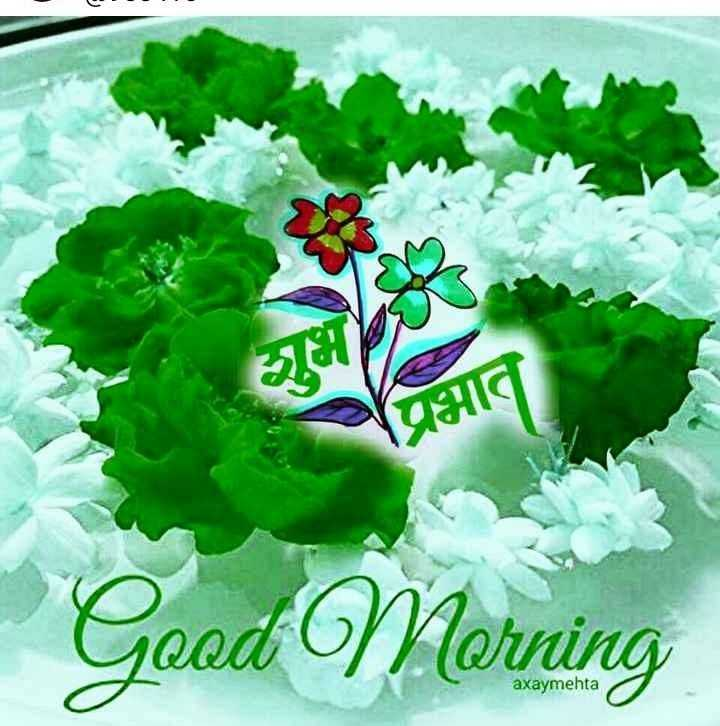good morning god 🌹🌸🌷🌼🌻 - प्रभात Good Morning axaymehta - ShareChat