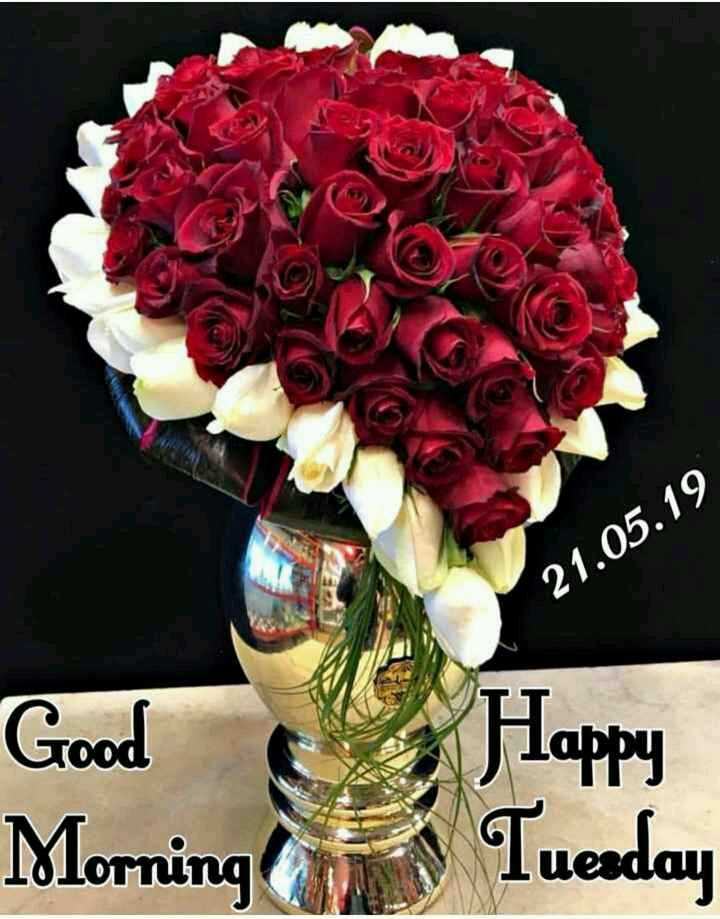 good morning god 🌹🌸🌷🌼🌻 - 21 . 05 . 19 Good Happy Tuesday Morning - ShareChat