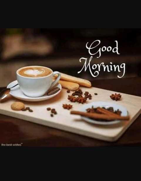 good morning #🌹good morning - Good Morning the best wishes - ShareChat