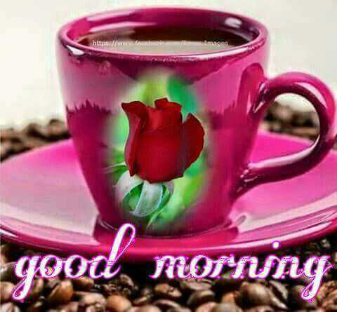 💖💖good morning good morning 💖💖💗 - coot MOTNng - ShareChat