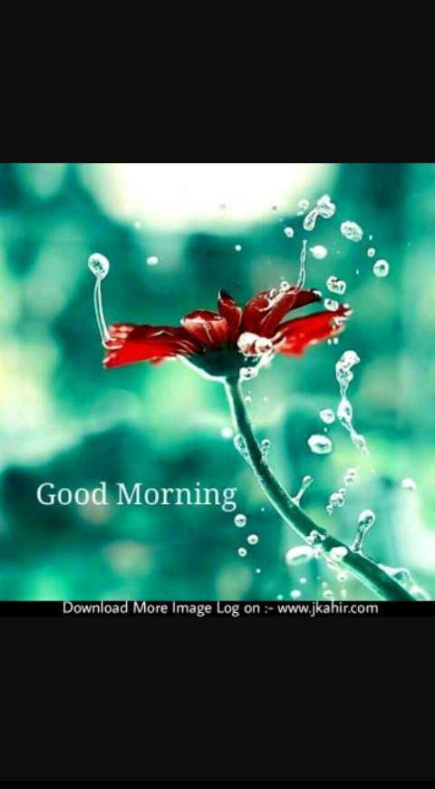 good morning #🌹good morning - Good Morning Download More Image Log on : - www . jkahir . com - ShareChat