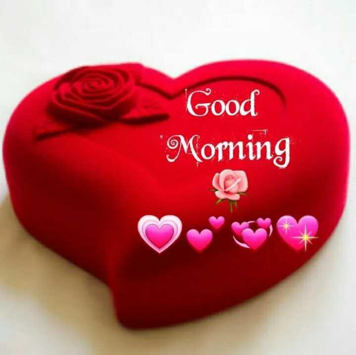 good morning #🌹good morning - Good Morning - ShareChat