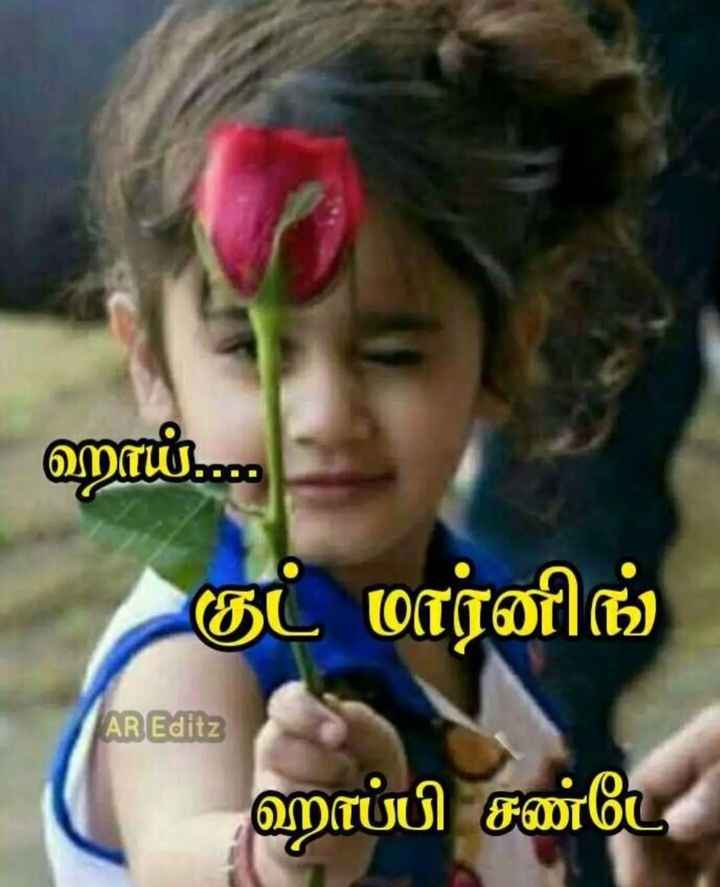 goodmorning guys happy sunday - ஹாம் . . . குட் மார்னிங் AR Editz ஹாப்பி சண்டே - ShareChat