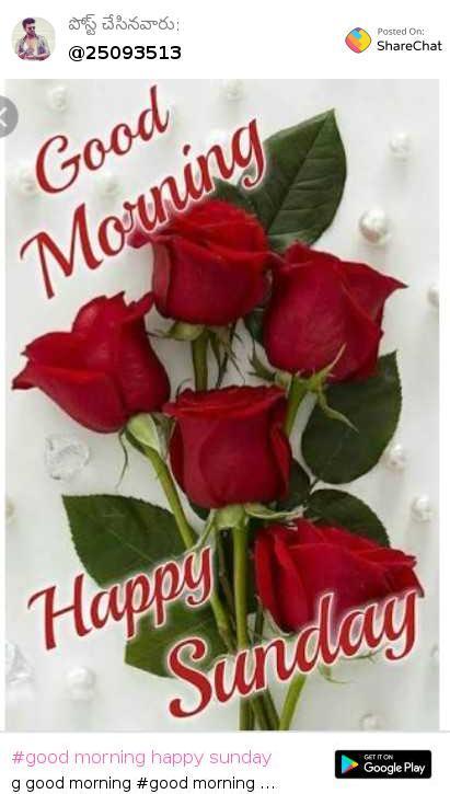 Labace: Share Chat Telugu Good Morning Images