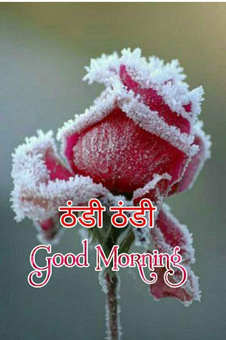 good morning ji - ठंडी ठंडी Good Morning - ShareChat