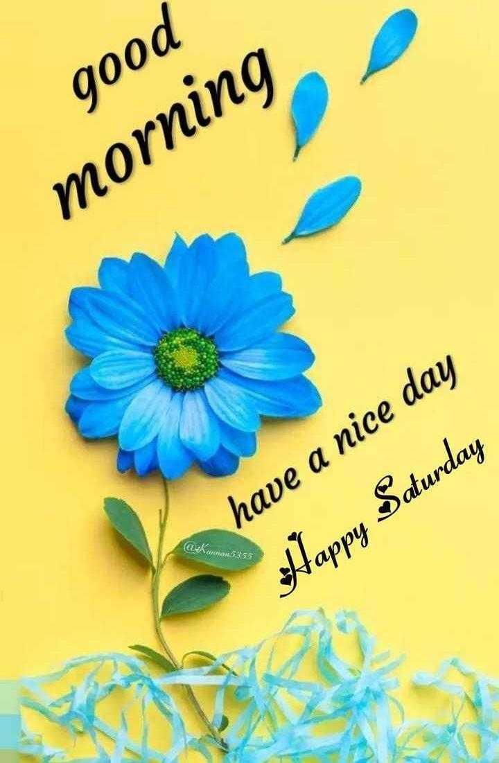 good morning ji😊 - good morning Elshantan 5355 have a nice day Happy Saturday - ShareChat
