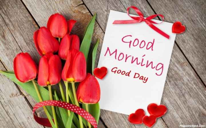 good morning sweetheart🌷🌷 - Good Morning Good Day Magazine Bank . com - ShareChat