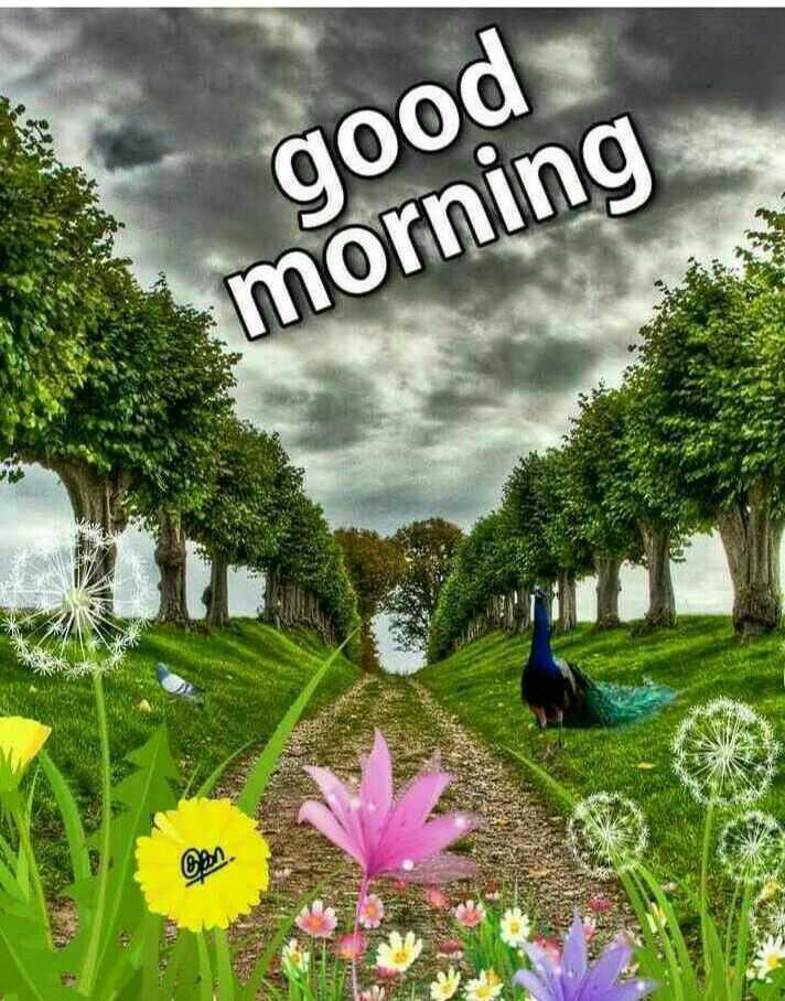good m😊rning - good morning om - ShareChat