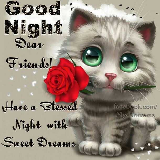 goodnight✨ - Good Dear Friends ! facebook . com / My Universe Have a Blessed Night with Sweet Dreams - ShareChat