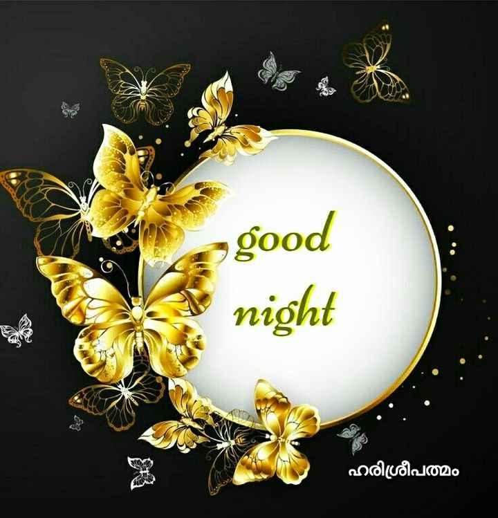 goodnight 💘❤💘❤💘❤💘❤ - good night a ഹരിശ്രീപത്മം - ShareChat