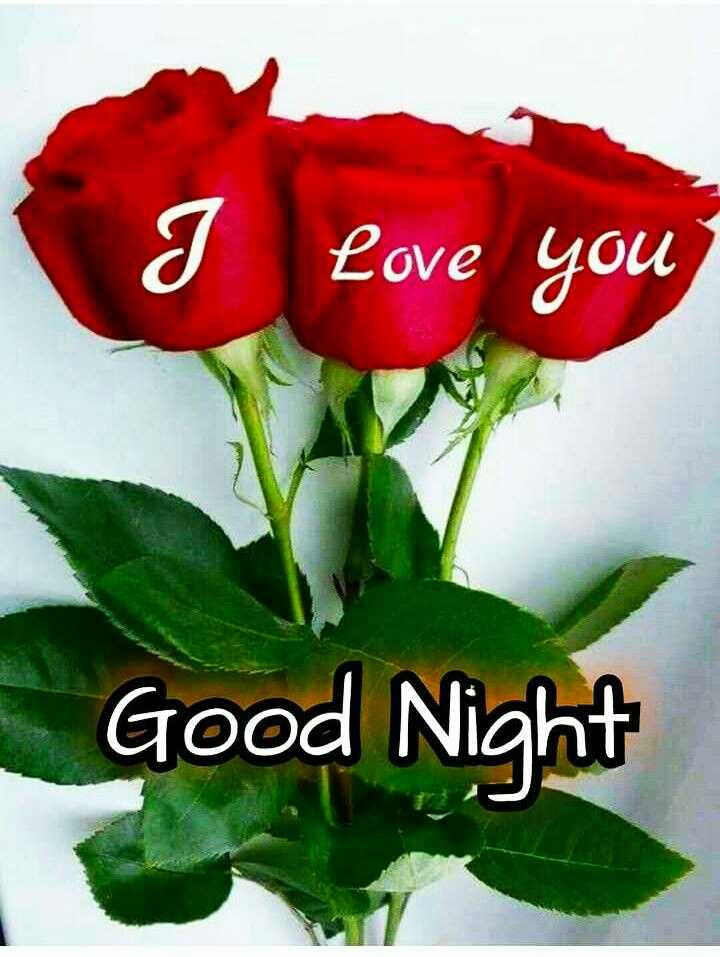 good night 💙❤💛💜💚 - I love you Good Night - ShareChat