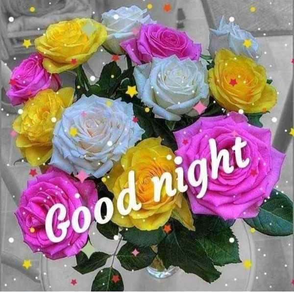 good night  (.......) - Good night - ShareChat