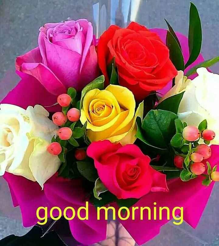good night /good morning - good morning - ShareChat