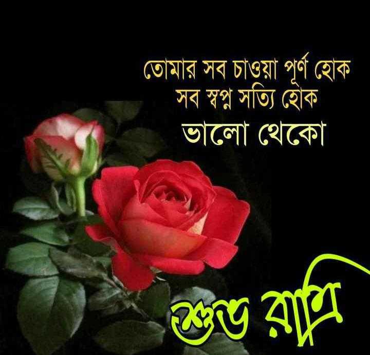 good night - তােমার সব চাওয়া পূর্ণ হােক । সব স্বপ্ন সত্যি হােক । ভালাে থেকো শুভ রাতি - ShareChat
