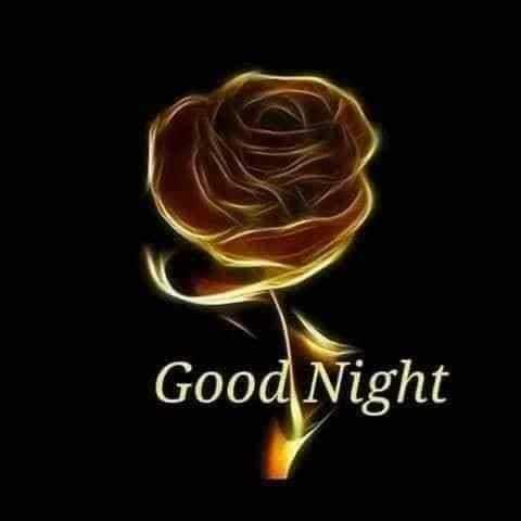 good night - Good Night - ShareChat