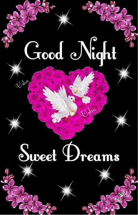 💞💑good night 💑💞 - Good Night wisho Usha Sweet Dreams - ShareChat
