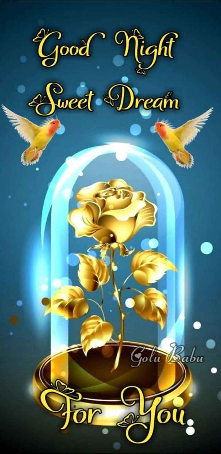 🌹🌹good night 🌹🌹 - Good Night Sweet Dream SO Golu Babu оси ibu For you . - ShareChat