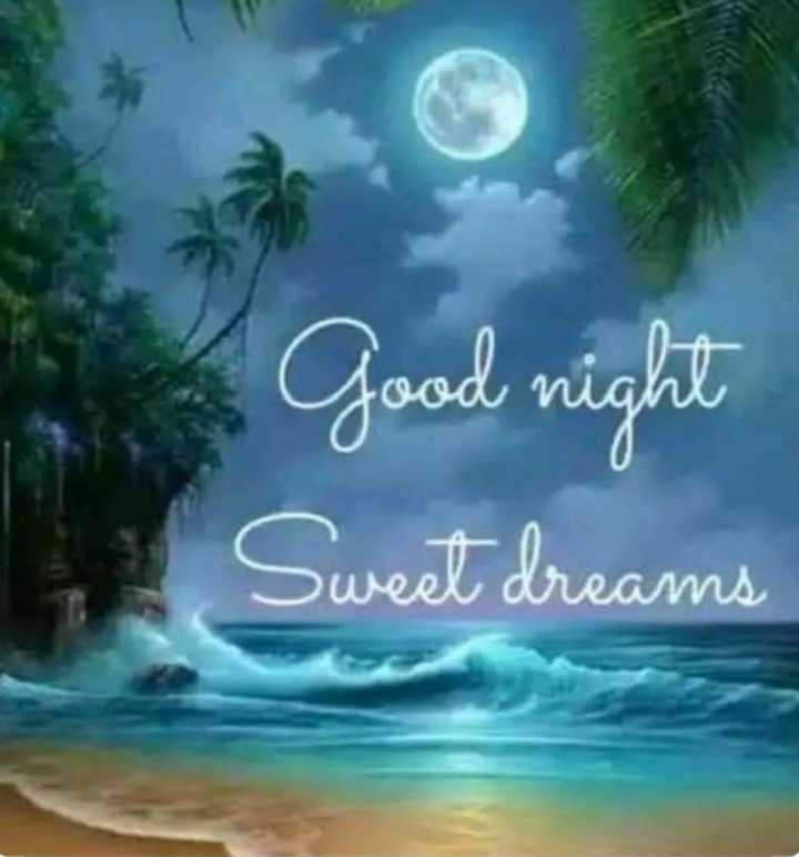 good night💐 🌸 - Good night Sweet dreams - ShareChat