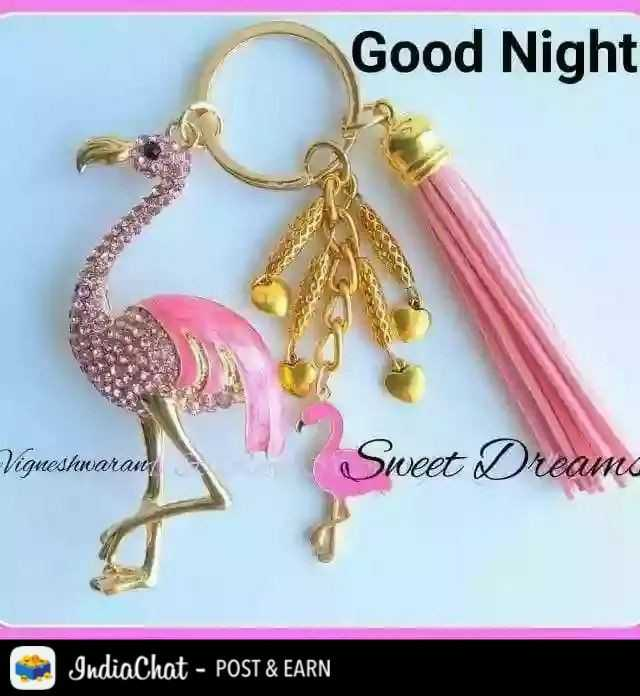 ☺good night☺ - Good Night Vigneshwaran Sweet Dreams IndiaChat - POST & EARN - ShareChat