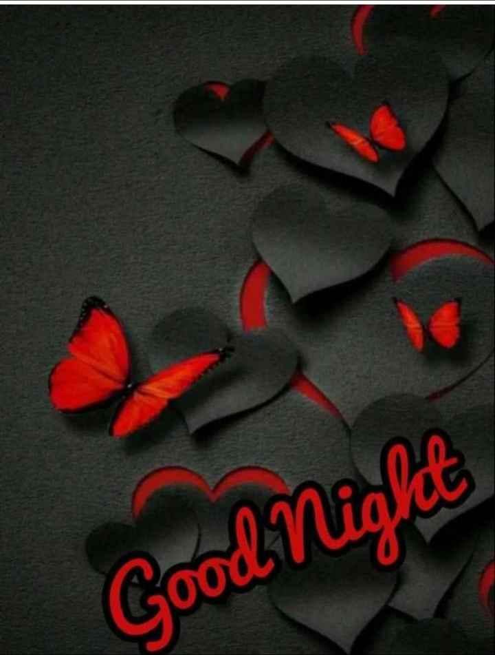 good night👸 - Good Night - ShareChat