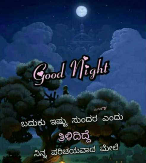 #good night - Good Night ( OOdL ಬದುಕು ಇಷ್ಟು ಸುಂದರ ಎಂದು * ತಿಳಿದಿದ್ದೆ ನಿನ್ನ ಪರಿಚಯವಾದ ಮೇಲೆ - ShareChat