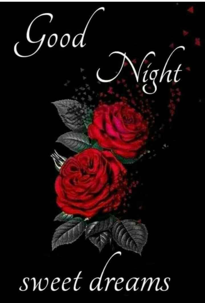 good night 🌺🌺 - Good Night sweet dreams - ShareChat