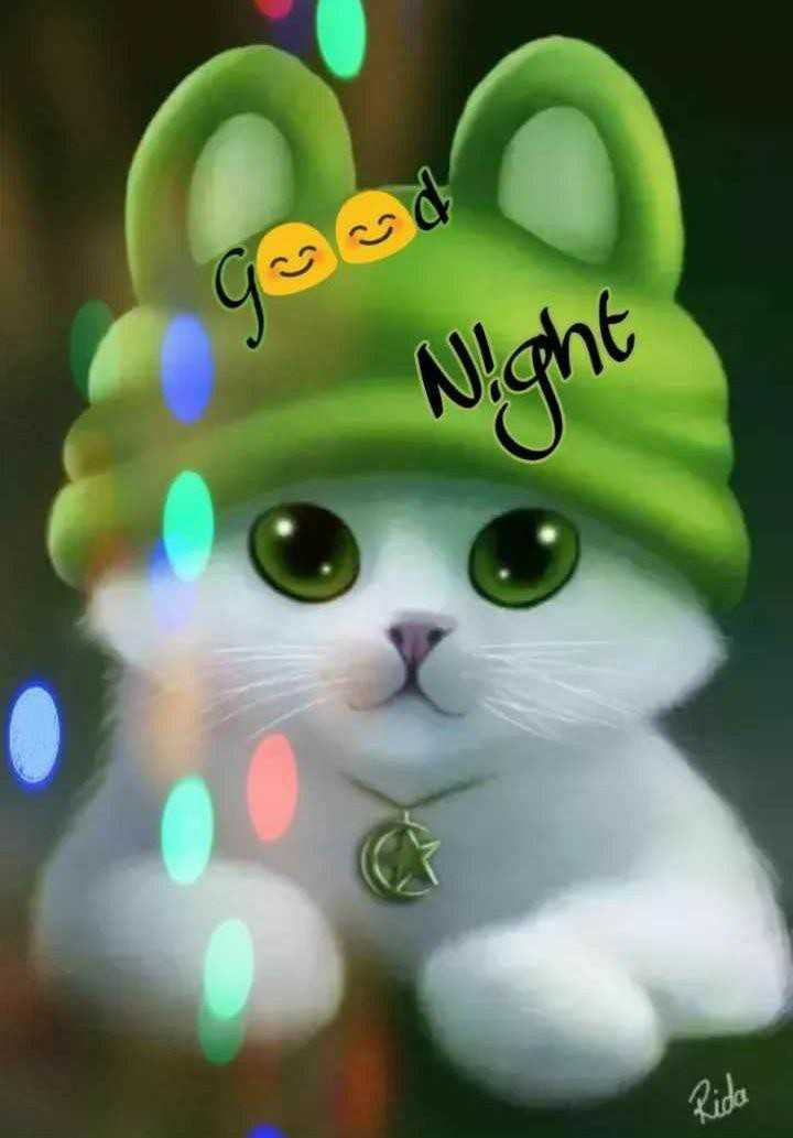 good night 😘😘😴😴 - Night Rida - ShareChat