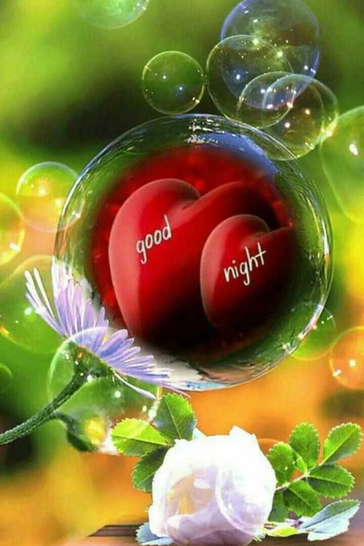 good night - good - ShareChat