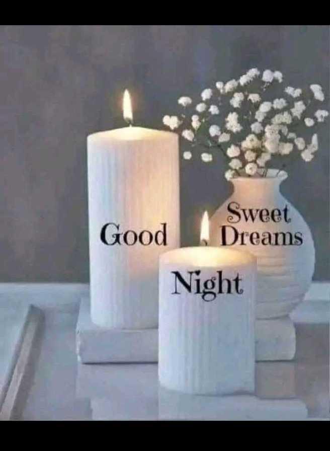 good night 🌚 - Sweet Good Dreams Night - ShareChat