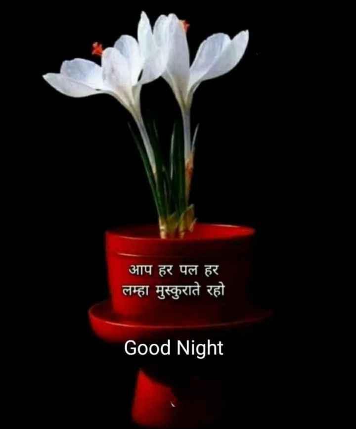🌹 good night 🌹 - आप हर पल हर लम्हा मुस्कुराते रहो Good Night - ShareChat