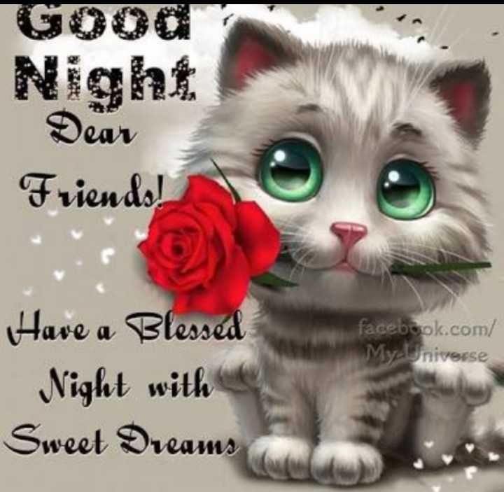 good night - Good Night Dear Friends ! facebook . com / MyUniverse Have a Blessed Night with Sweet Dreams - ShareChat