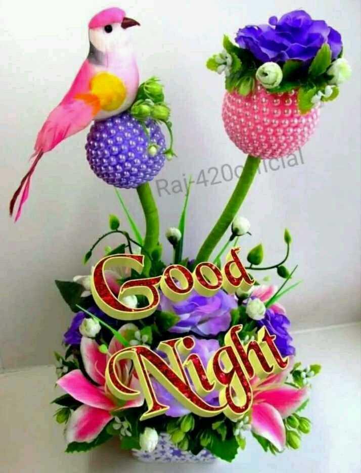 😴 good night 😴 - ShareChat