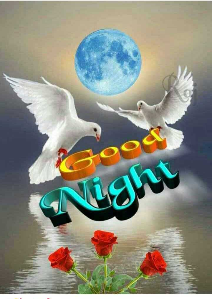 🌙 good night 🌙 - Good ( Night - ShareChat