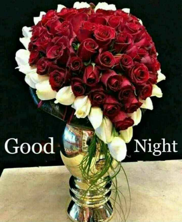 🎇good night🎇 - Good Night - ShareChat