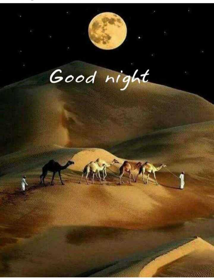 good night - Good night - ShareChat
