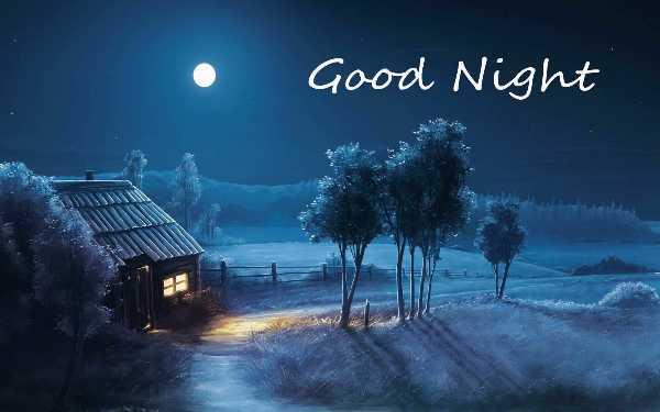 good night 🌺🌺 - Good Night - ShareChat