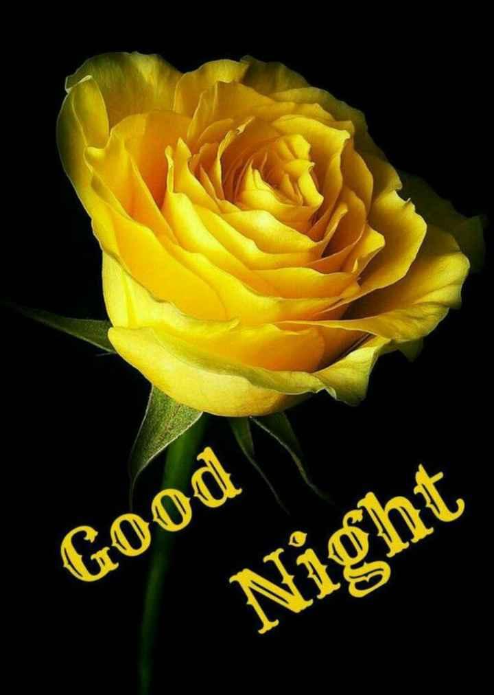 good night🎇 - Good Night - ShareChat