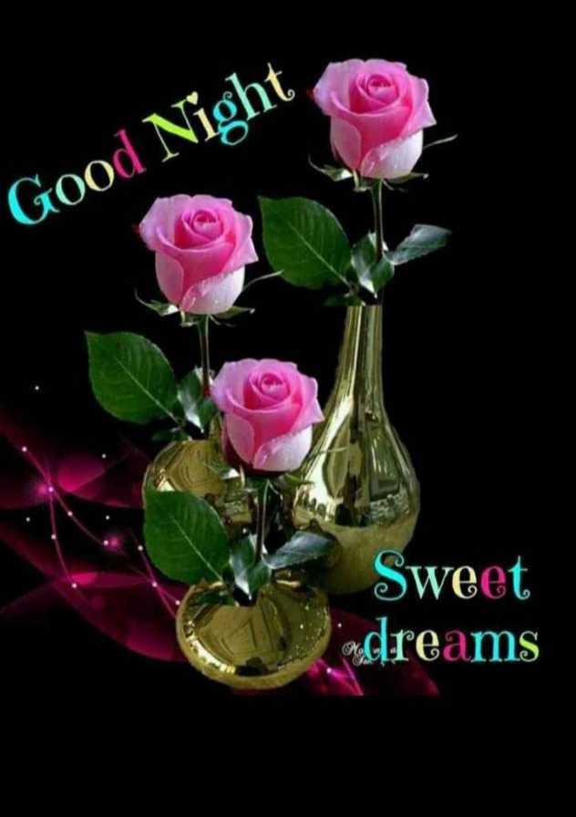 good night 🌚 - Good Night Sweet adreams - ShareChat